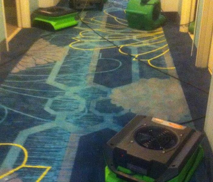 three green air movers in a hallway with blue carpet.