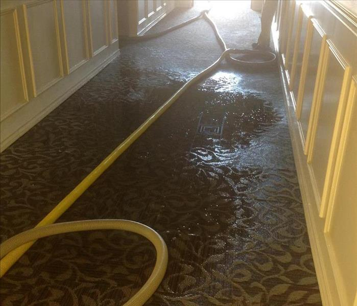 Hall with soaked carpet and a yellow hose stretched across.