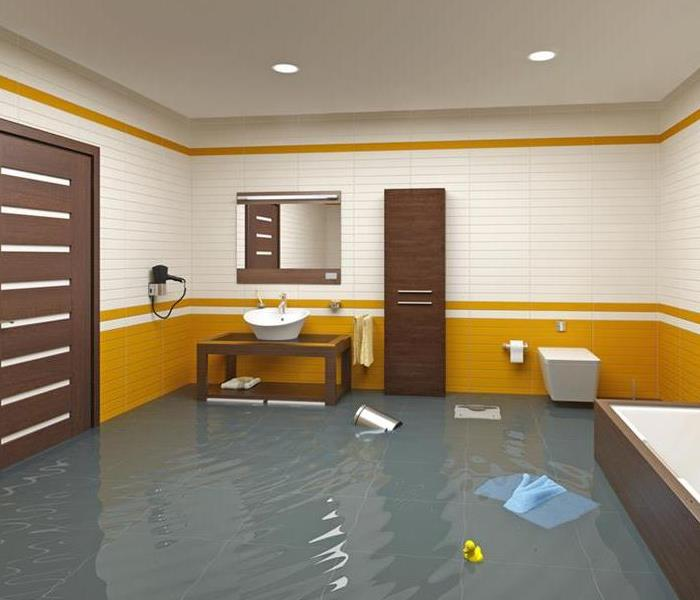 Water Damage 4 Signs You May Have a Shower Leak