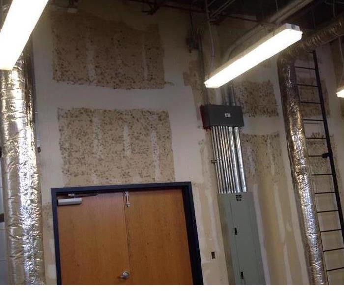 Commercial 3 Standards for Mold Maintenance